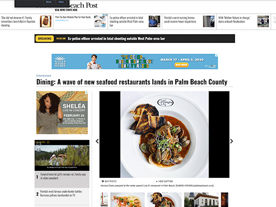 City of Boca Raton placement in PalmBeachPost.com by Polin PR